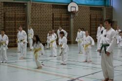 taekwondo_27032015-3611-3f60d23bcff1115983954c2a243a3d69