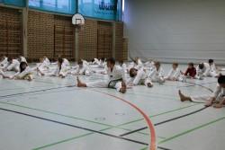 taekwondo_27032015-3621-2693c775b142309f7094d983eb67b59c