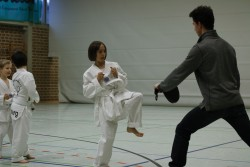 taekwondo_27032015-3664-7645291b99a8f2eba1283f47799a637d
