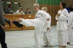 taekwondo_27032015-3670-4ef75e668a999c944aee6d9e111b9126