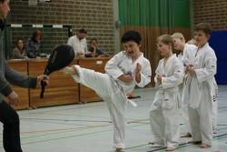 taekwondo_27032015-3672-d5cb61e36e120595f24b90f5f07dd75b