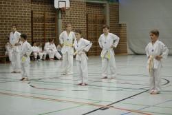 taekwondo_27032015-3738-3690dd7b0223953bac3d9f9a77465140