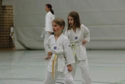 taekwondo_27032015-3744-74ea3e541d9e59d0fa92dcef34c8ec4c