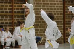 taekwondo_27032015-3749-ca848bae9311a02ce938c560cc603a9c