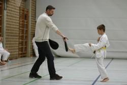 taekwondo_27032015-3771-b8385c2dbbed775539538aecf315b17c