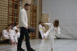 taekwondo_27032015-3791-1e7d436a660eb8d0a8aa4c6ef13d15eb
