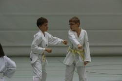taekwondo_27032015-3818-b700bd12be2c307788ef8b8dacf58c3f