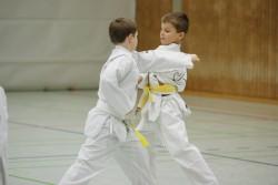 taekwondo_27032015-3819-1a053830d11748c401bca67048ed0528