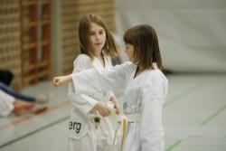 taekwondo_27032015-3820-b62b71ae7fd2f4fe2e1586e17554a511