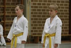 taekwondo_27032015-3903-3ef68d902c3dd85b8838d5a84d1b64b0