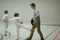 taekwondo_27032015-3988-425c48ecb4b355736017ce2cfbd853ad