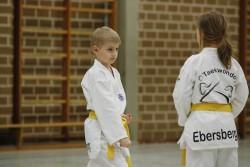 taekwondo_27032015-4037-16442cc96a853f35ce7a13b36e120cf3