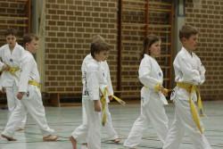 taekwondo_27032015-4078-043c14aa78f3324adfc7bff595d370d9