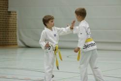 taekwondo_27032015-4079-05a1c694d02d35114e4844ef94972955