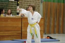 taekwondo_27032015-4099-334846cdacf35b2df615a9a51b5dc18c