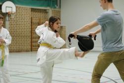 taekwondo_27032015-4110-a31fc10a86c484d27c354699c4fc186d