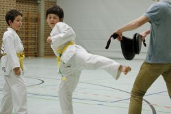 taekwondo_27032015-4121-48cd2fc725c0e25076fd3a9b5ba08d95