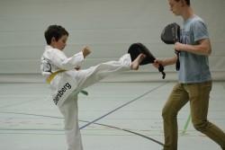 taekwondo_27032015-4130-08cc4b71b145782db387cc09f025ebfd
