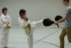 taekwondo_27032015-4131-7dac10466adfdf09c692622d277e1db3