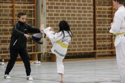 taekwondo_27032015-4133-8bb7552f23c75df68b06503205614857