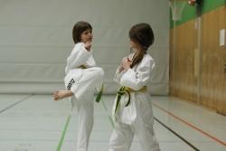 taekwondo_27032015-4142-55d04413fbcba64dd67ed67484d84ac6