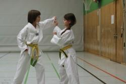 taekwondo_27032015-4153-2a9ff0e721f8d4c44df6ea36d1e32e36
