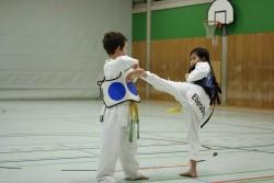 taekwondo_27032015-4203-5d86736e3ea9da7b5e7dd9b54087e661