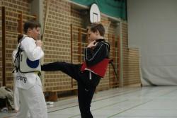 taekwondo_27032015-4232-1987f172b59f884c5e0d650f357f0574