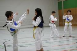 taekwondo_27032015-4239-d6f07565ec52d911bc8048e683e2a160