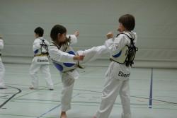 taekwondo_27032015-4256-8e63fd4b607496f8c682d18248038db1