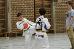 taekwondo_27032015-4271-a68f91fc9690dcb4fc69c88d865cdf76