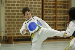 taekwondo_27032015-4297-a419873d57ba96ef537dbc33b389d218