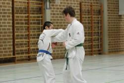 taekwondo_27032015-4337-ea923086e348053b4239a61c4ccad12c