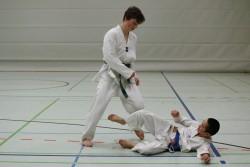 taekwondo_27032015-4386-b58f8c0a90a0301d86f00bcd9dd10cd0