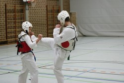 taekwondo_27032015-4420-342fc89188edc7a724adb5a88d2808ac
