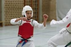 taekwondo_27032015-4431-081dd5ba218aaa0483aa89a9bd4a011e