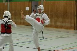 taekwondo_27032015-4445-8c2360006456202601d7b7df7524ee1c