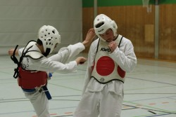 taekwondo_27032015-4455-15129cc8b588689227ad92f5c5dad561