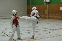 taekwondo_27032015-4466-8ab4417369c183f99a75d224128278ff