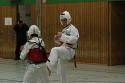 taekwondo_27032015-4480-57bd2fca4cf09a288f62389c176cd7a8