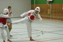taekwondo_27032015-4516-331f59bcd33343cb81d63eda7f0e74a6