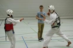 taekwondo_27032015-4531-27dcdf283d44dde35106156841bdc7c0